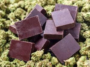 order Feminized Marijuana Seeds
