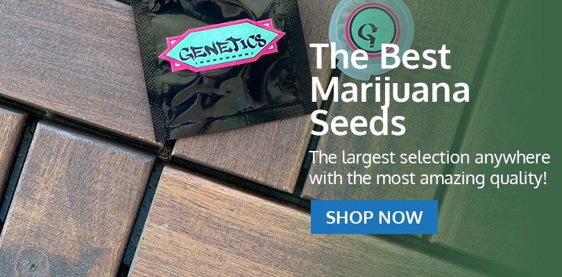 PSB-marijuana-seeds-louisiana-pack1