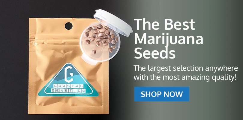 PSB-marijuana-seeds-tennessee-pack1