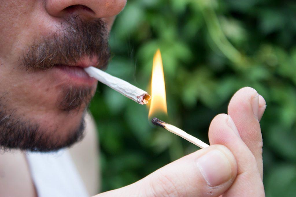 buy-cannabis-seeds-in-alberta