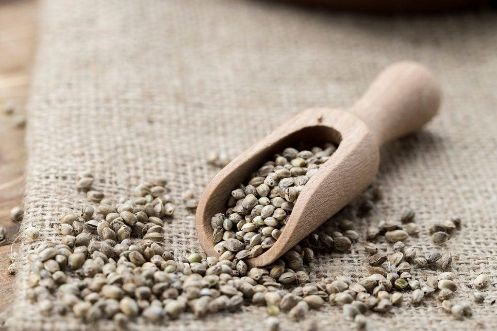 buy-cannabis-seeds-aurora