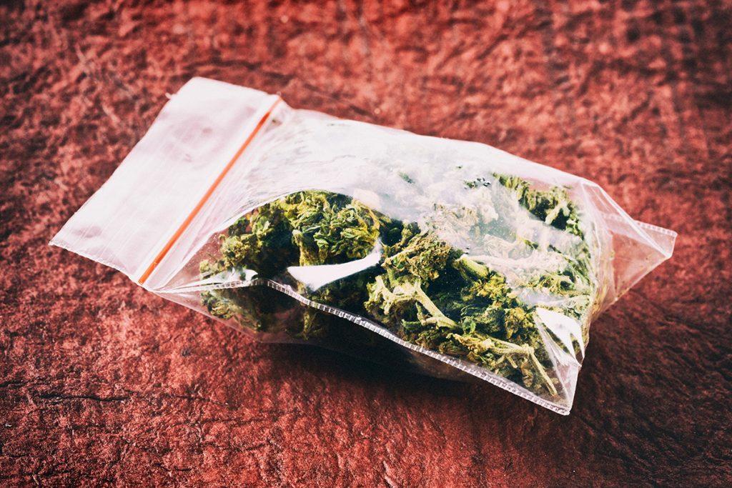 buy-marijuana-seeds-bridgeport