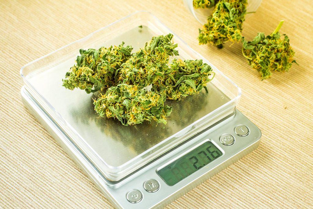 buy-marijuana-seeds-frederick