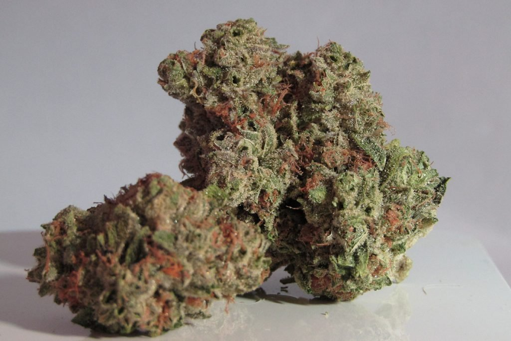 buy-marijuana-seeds-north-charleston