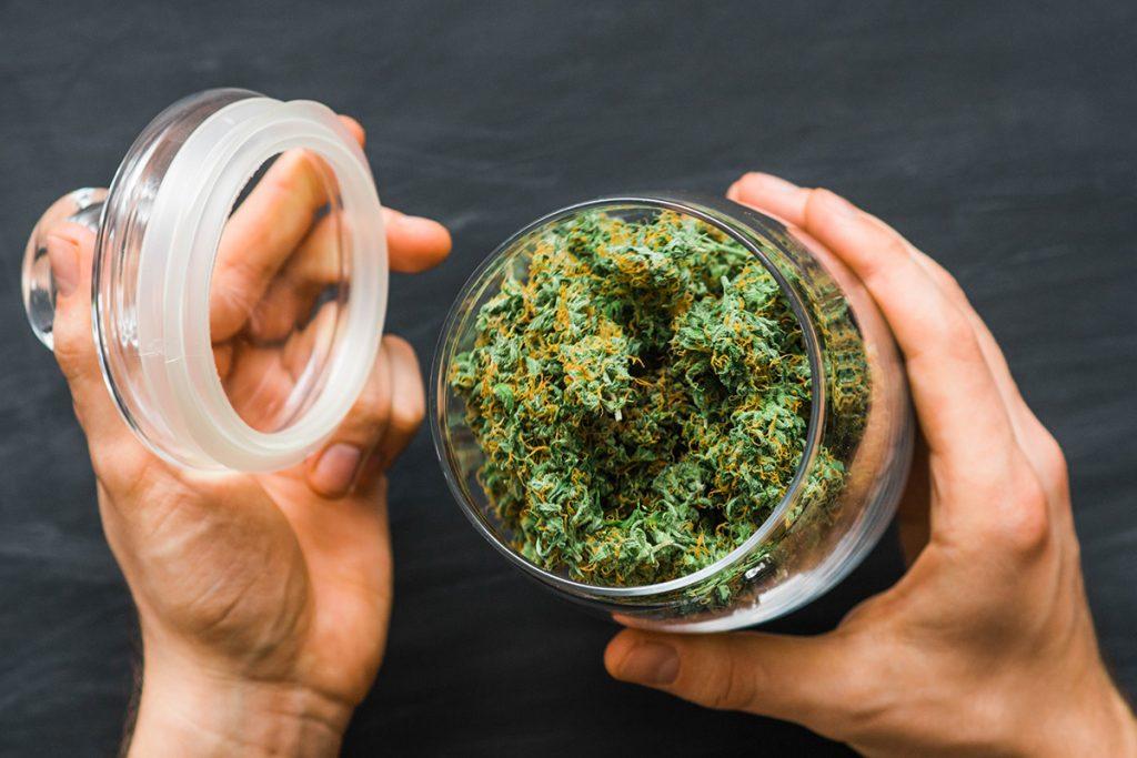 buy-marijuana-seeds-in-surprise