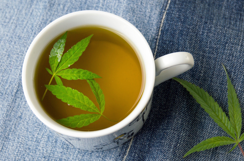 Marijuana herbal tea and green cannabis leaves