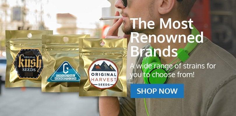 PSB-marijuana-seeds-coon-rapids-2