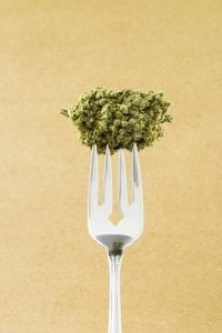 consuming-marijuana