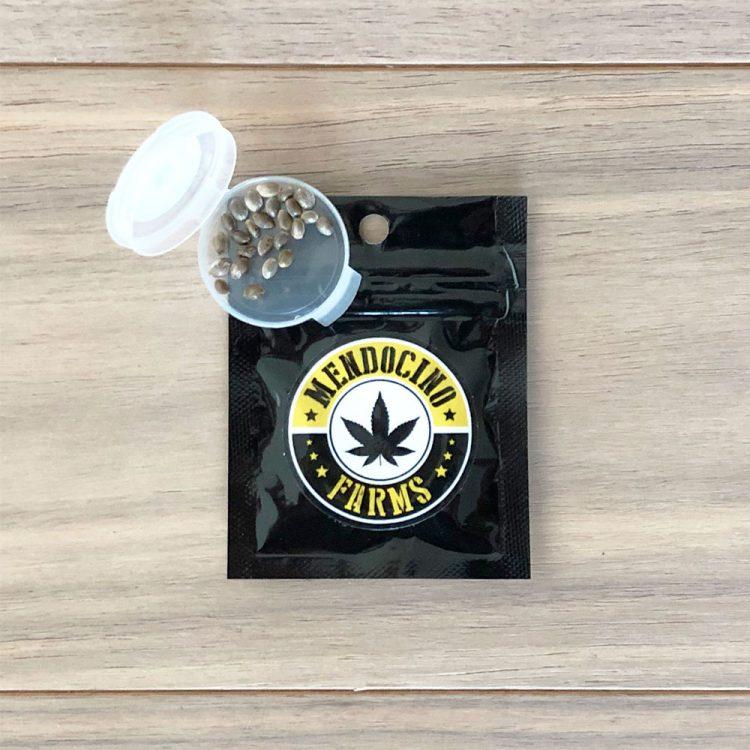 Buy-Khufu-Feminized-Marijuana-Seeds