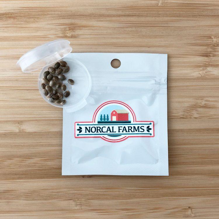 Buy Grand Hindu Feminized Marijuana Seeds packing