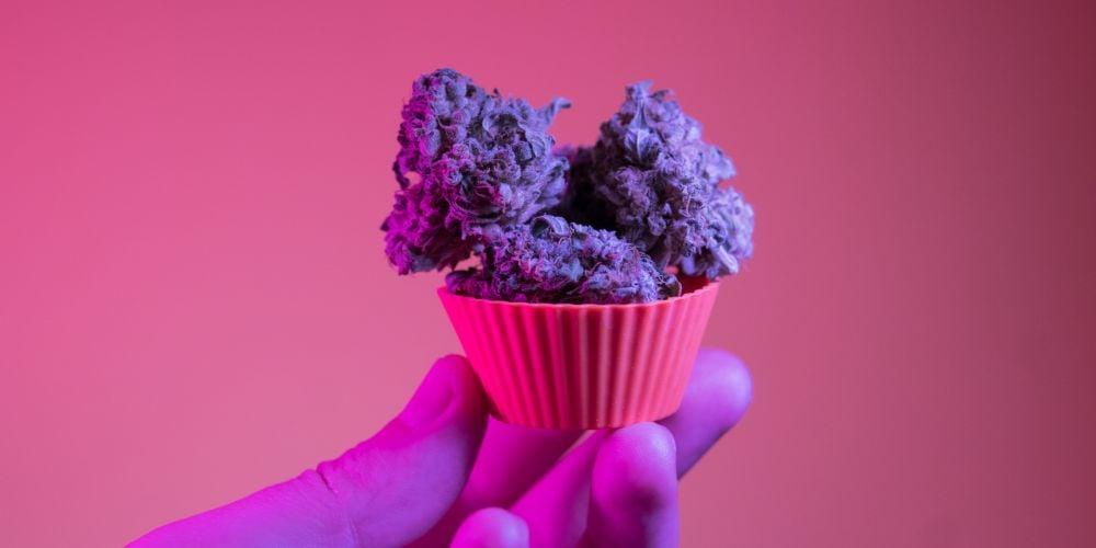 Marijuana Bakers