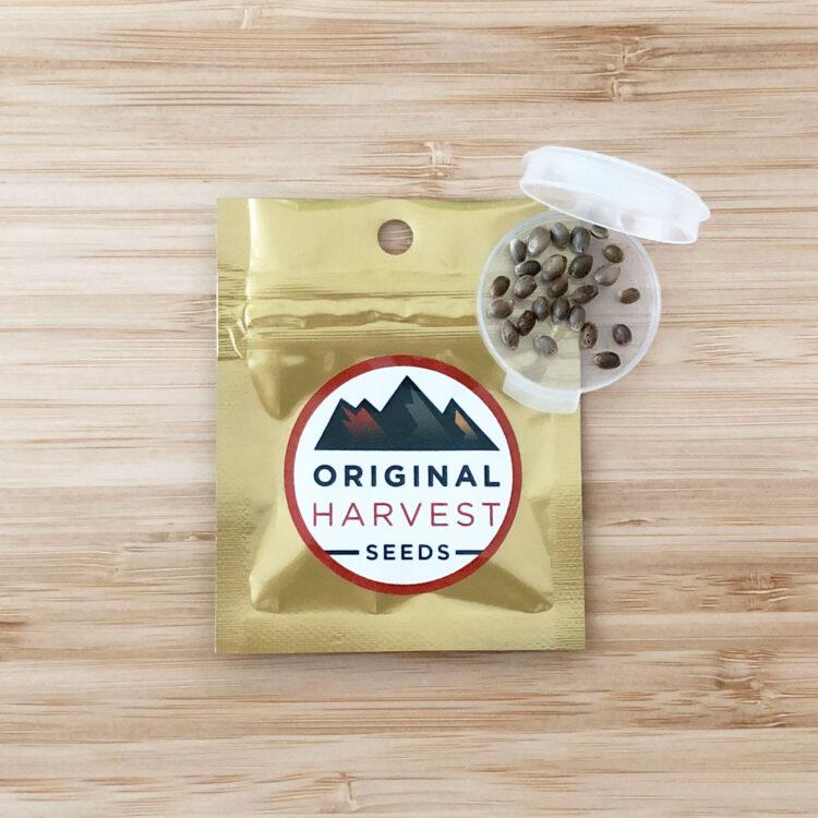 want Hashbar OG Autoflowering Feminized Marijuana Seeds